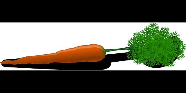 1 single carrot